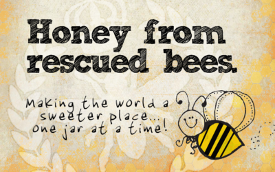 Honey From Rescued Bees Sign